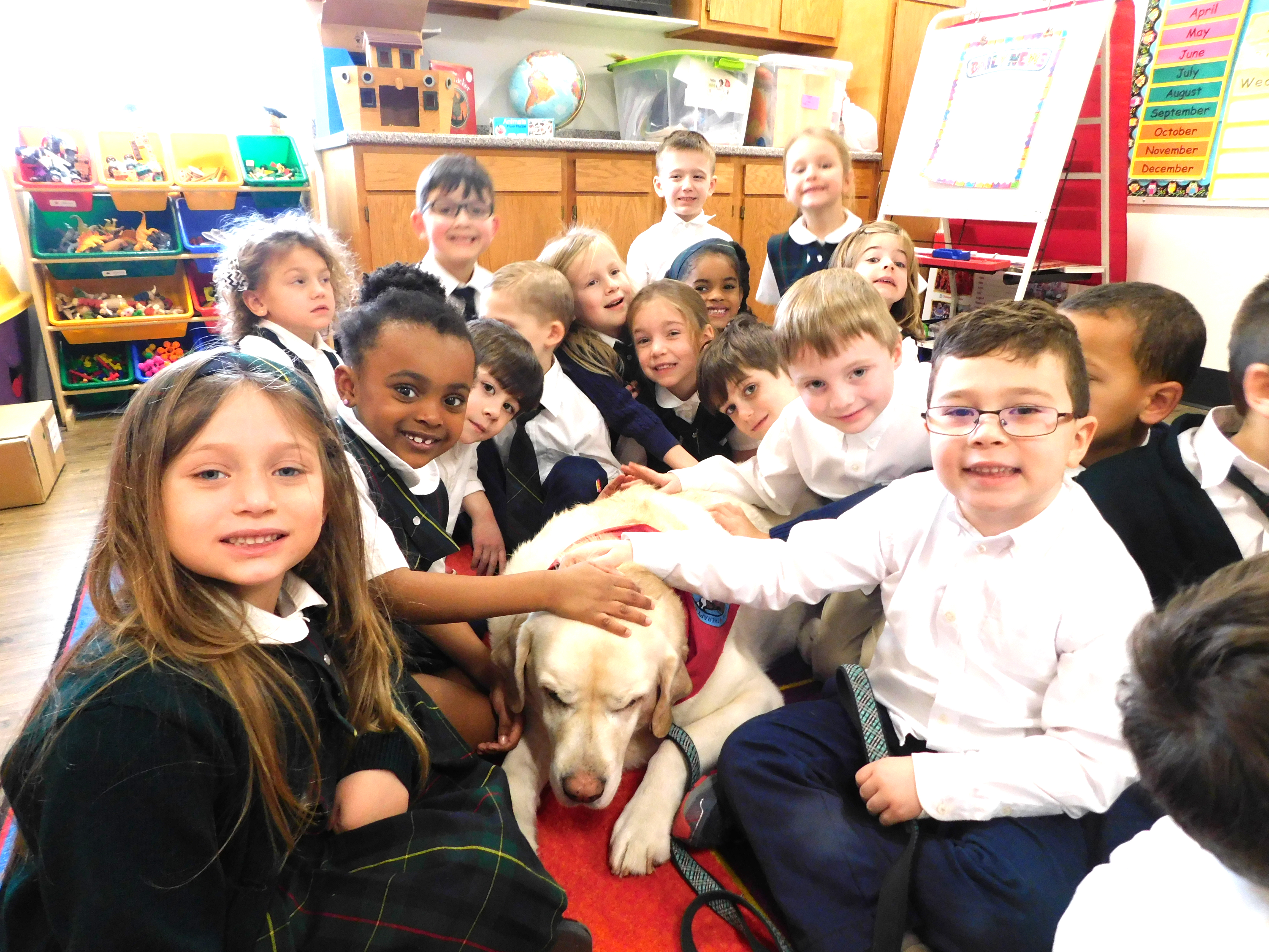 Kindergarten with Buddy the therapy dog